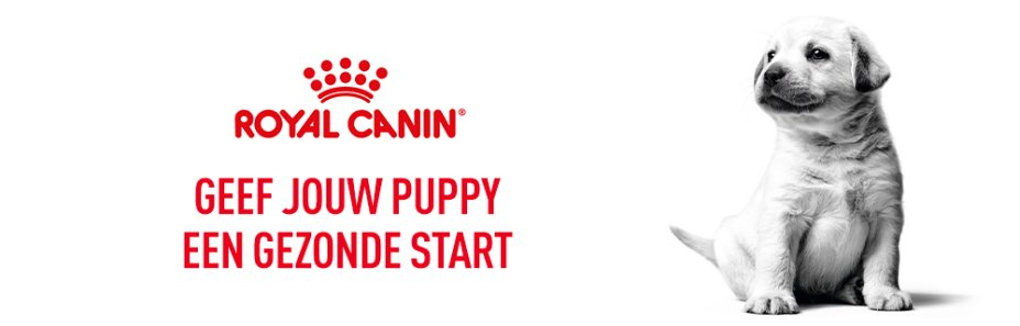 Main banner Royal Canin Puppy Nutrition
