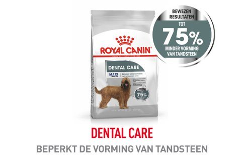 Royal Canin Dental Care