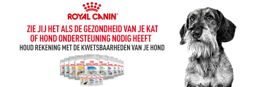 Main banner Royal Canin Canine Care Nutrition