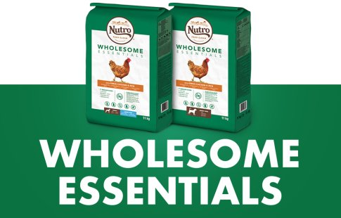 Nutro - Wholesome Essentials