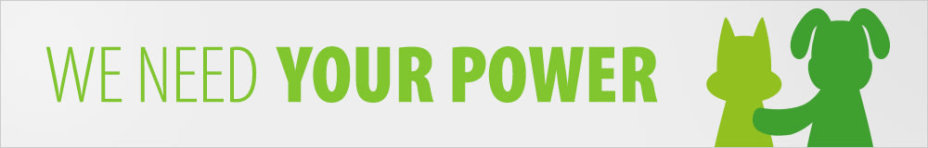 Banner we need your power