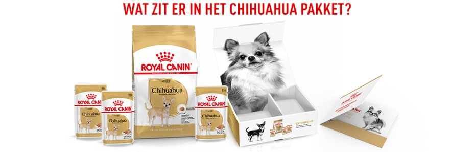 Wat zit er in de ROYAL CANIN CHIHUAHUA BOX